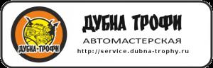 service-dubna-trophy-logo